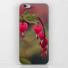 love comes again iPhone Skin