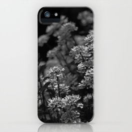 Edelweiss by Moonlight iPhone Case