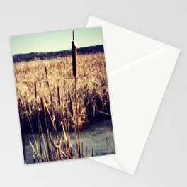 Cattails Stationery Cards