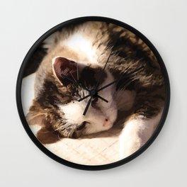 Sleeping Cat Illustration Wall Clock
