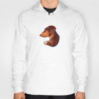 dachshund Hoodies featuring Dachshund by Kendra Aldrich