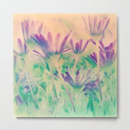 Dreamy Spring Lavender Daisy Flowers Metal Print
