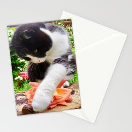 Orazio and the snail Stationery Cards