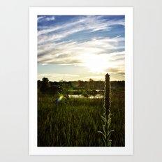 Wolf Lake Sunset Art Print