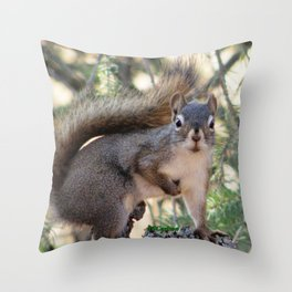 And Who Are You? Throw Pillow