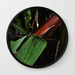 Leaf-Wrapped Bamboo in Tropical Forest: Fine Art Photo Wall Clock