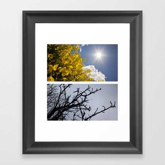 Life Cycle. Framed Art Print