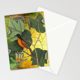Baltimore Oriole on Tulip Tree, Vintage Natural History and Botanical Stationery Cards