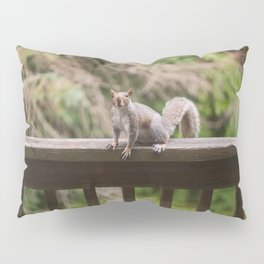 Spring Squirrel Pillow Sham