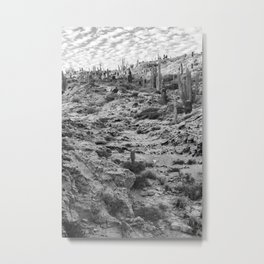 Fossilized path Metal Print