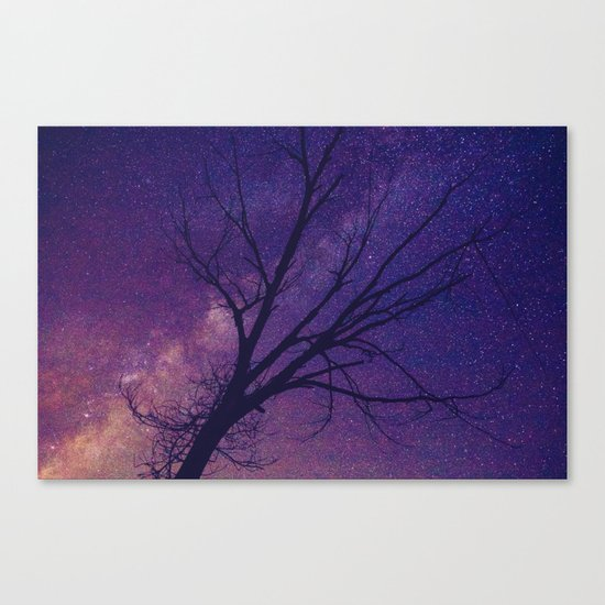 Under The Heavens Canvas Print