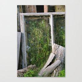 Window Framed Flora Canvas Print
