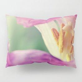 Inward Beauty Pillow Sham