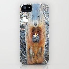 Ground Hog iPhone Case