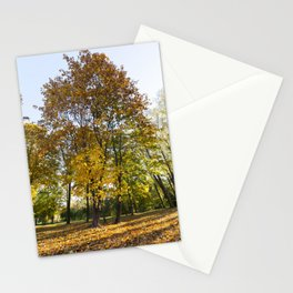 Park in the fall Stationery Cards