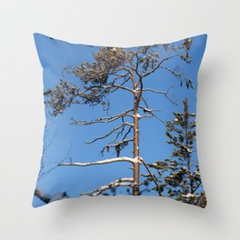 Frosty day in forest Throw Pillow