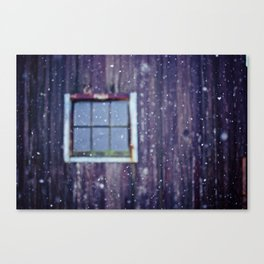 The Snow Falls Down Canvas Print