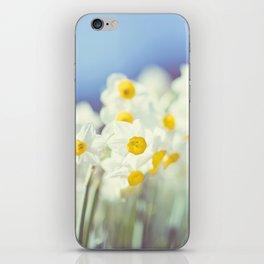 Daffy flowers iPhone Skin