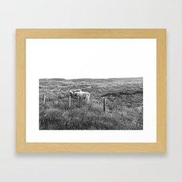 Coo Kiss Framed Art Print