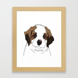 Sully the sweet Saint Bernese Framed Art Print