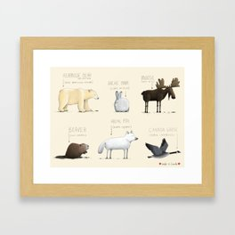 Canadian Animals Framed Art Print