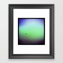 Seagull & Rainbow Framed Art Print