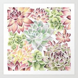 Bright Watercolor Succulents Art Print