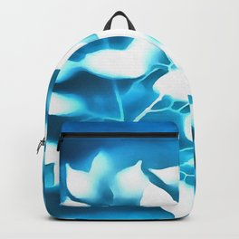 Disappearance Backpack
