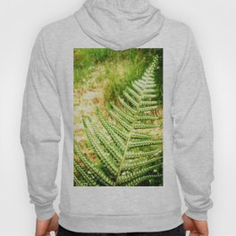 Green Fern Hoody