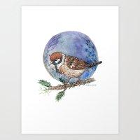 Sparrow Art Print