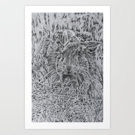 Hare in the Grass Art Print