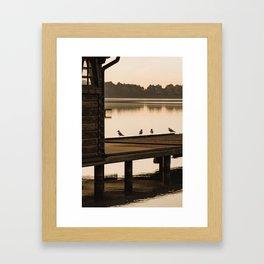 Birds on the pier, Lake Palic, Serbia / Silhouette / Sunrise Framed Art Print