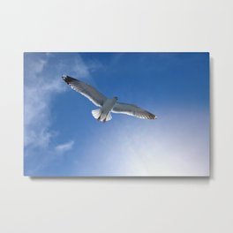 Birds in the sun against the sky Metal Print