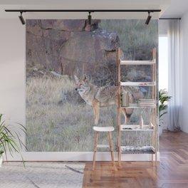 Watercolor Coyote 07, Estes Park, Colorado, Solitary Wonderer Wall Mural