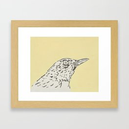 Robin #93 Framed Art Print