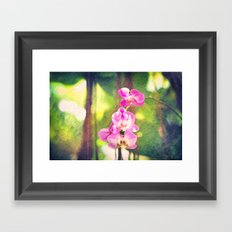 Orchid Impressions Framed Art Print