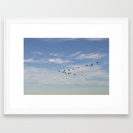 Untitled from Rat Beach series Framed Art Print