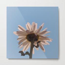 White Daisy Flower Sky Metal Print