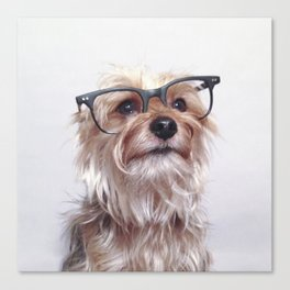 Rudy Tootie Glasses Canvas Print