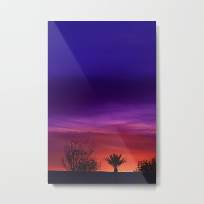 Desert SW Sunset Metal Print