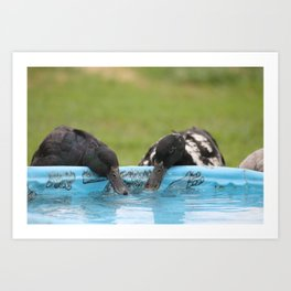 At The Watering Hole Art Print