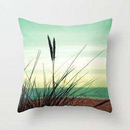 Dune View Throw Pillow