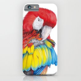 Macaw colored pencil illustration iPhone Case