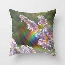 Sun Ray Salvia Throw Pillow