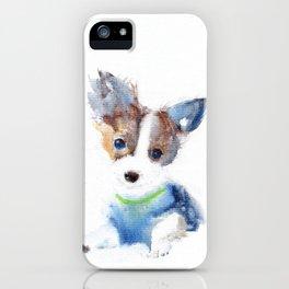 Ruffell iPhone Case