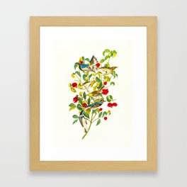 Vintage Scientific Bird & Botanical Illustration Framed Art Print