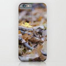 Seedling - B iPhone 6s Slim Case