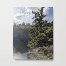 Beside The Falls, Beautiful Old Pine Tree Stands Sentry Beside A Watefall Metal Print