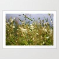 Meadow II Art Print
