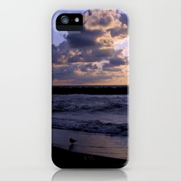 Seagull at lakeshore iPhone Case
